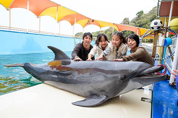 Toba Bay Cruise and Dolphin Island